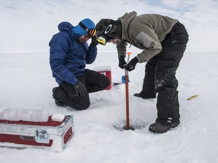 Collecting samples on the ice / La collecte d'échantillons sur la glace